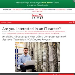 Are you interested in an IT career?
