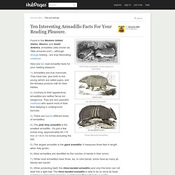 Ten Interesting Armadillo Facts For Your Reading Pleasure.
