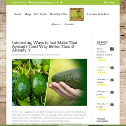 Buy Heirloom, Hand-Picked Avocados - Avocado Monthly