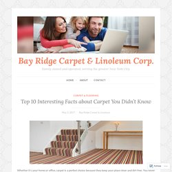 Top 10 Interesting Facts about Carpet You Didn't Know – Bay Ridge Carpet & Linoleum Corp.