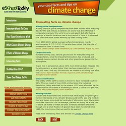 Interesting facts and evidence of climate change for children