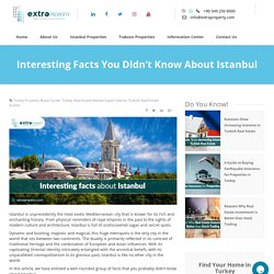 Interesting Facts You Didn't Know About Istanbul