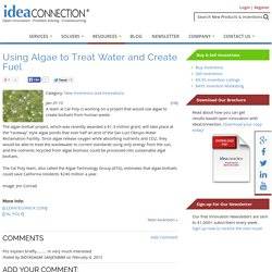 Using Algae to Treat Water and Create Fuel