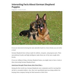 Interesting Facts About German Shepherd Puppies