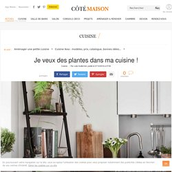 Plante intérieur dans la cuisine : inspiration déco en photos - 07/12/16