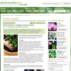 Plantes d'intérieur : rempotage, arrosage, entretien