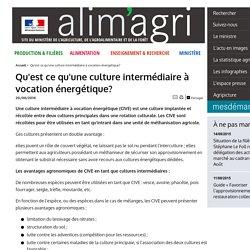 MAAF 20/08/14 Qu'est ce qu'une culture intermédiaire à vocation énergétique? (méthanisation)