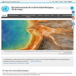 Día Internacional de la Diversidad Biológica – 22 de mayo