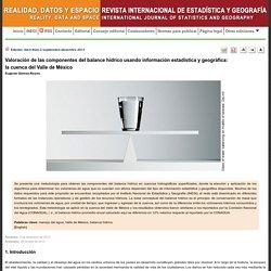 REVISTA INTERNACIONAL DE ESTADÍSTICA Y GEOGRAFÍA