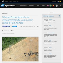 Tribunal Penal Internacional reconhece 'ecocídio' como crime contra a Humanidade