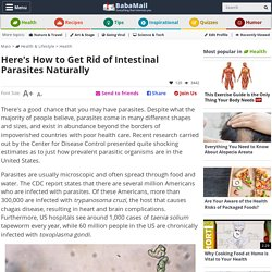 These Foods Will Kill Internal Parasites