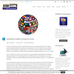 International Safety Compliance Guide - DDS International