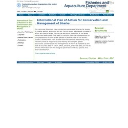 Fisheries & Aquaculture - International Plan of Action For the Conservation and Management of Sharks