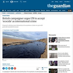 British campaigner urges UN to accept 'ecocide' as international crime