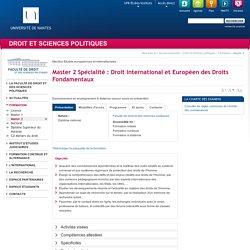 Université de Nantes - UFR Droit et Sciences politiques - Master 2 Spécialité : Droit International et Européen des Droits Fondamentaux