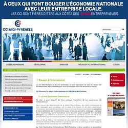 CCI Int'l Midi Pyrénées