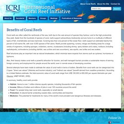 International Coral Reef Initiative