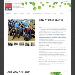 About us – LINV – International Laboratory of Plant Neurobiology