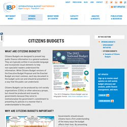 International Budget Partnership