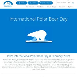 International Polar Bear Day - Polar Bears International