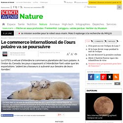 Le commerce international de l'ours polaire va se poursuivre - 8 mars 2013