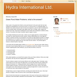 Hydra International Ltd.: Green Pond Water Problems: what is the answer?