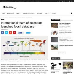 International team of scientists launches fossil database