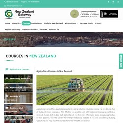 Cheapest Courses in New Zealand for International Students