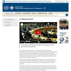 Tribunal pénal international pour l'ex-Yougoslavie