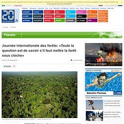 Journée internationale des forêts: «Toute la question est de savoir s'il faut mettre la forêt sous cloche»