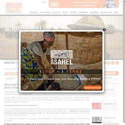 Journée internationale de la femme : SOS SAHEL lutte pour l'émancipation de la femme