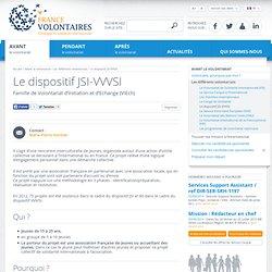 Dispositif JSI-VVVSI, chantier internationaux de jeunes, solidarité internati...