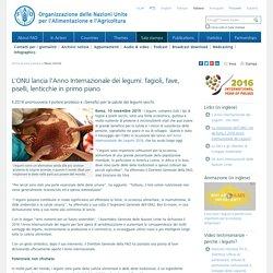 FAO -News Article:L'ONU lancia l'Anno Internazionale dei legumi: fagioli, fave, piselli, lenticchie in primo piano