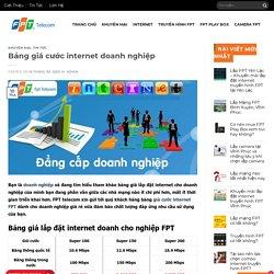 Lắp Đặt Internet Cho Doanh Nghiệp - Bảng Giá Internet FPT