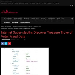 Internet Super-sleuths Discover Treasure Trove of Voter Fraud Data - The GOP Times