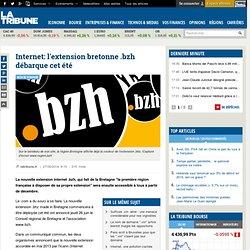 Internet: l'extension bretonne .bzh débarque cet été