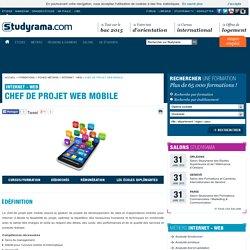 Chef de projet web mobile