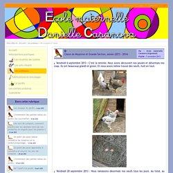 Site internet de l'école maternelle Danielle Casanova - De la poule à l'oeuf