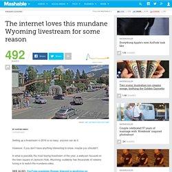 The internet loves this mundane Wyoming livestream for some reason