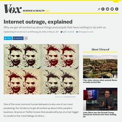 VOX - La crítica pública y el instinto moral detrás de la Internet
