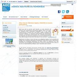 Sites internet :Mentions légales, CGU/CGV et clauses particulières