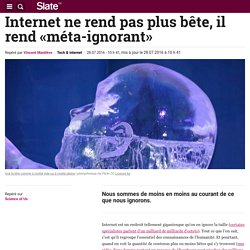 Internet ne rend pas plus bête, il rend «méta-ignorant»