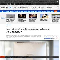 Internet : quel sort la loi réserve-t-elle aux trolls français ?