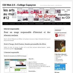 Internet collège Capeyron