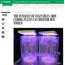 The Internet of Vegetables: How Cyborg Plants Can Monitor Our World