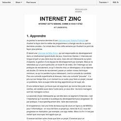 Internet Zinc #17