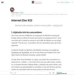Internet Zinc #22 – Internet Zinc – Medium