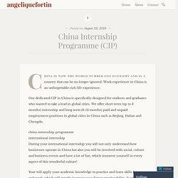 China Internship Programme (CIP) – angeliquefortin