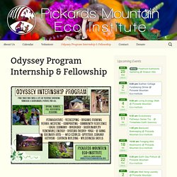 Odyssey Program Internship & Fellowship