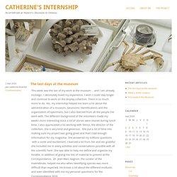 Catherine's Internship – Invertebrate at Nature's Museum in Ottawa